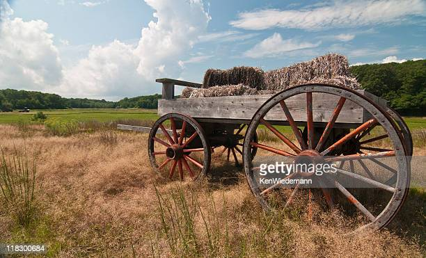 hay wagon - ox cart stock photos and pictures