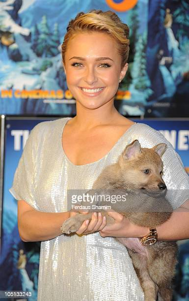 Hayden Panettiere attends gala the screening of 'Alpha Omega' at BFI Southbank on October 10 2010 in London England