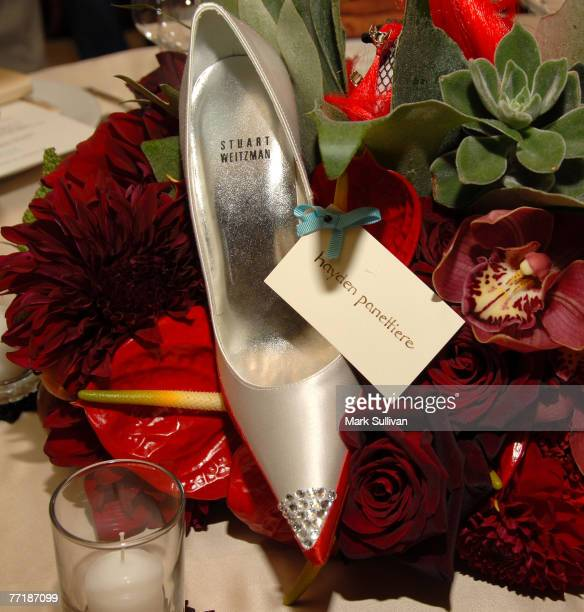 Hayden Panettiere designed shoe for auction at the Stuart Weitzman ovarian cancer shoe auction and dinner held in Los Angeles, California on...