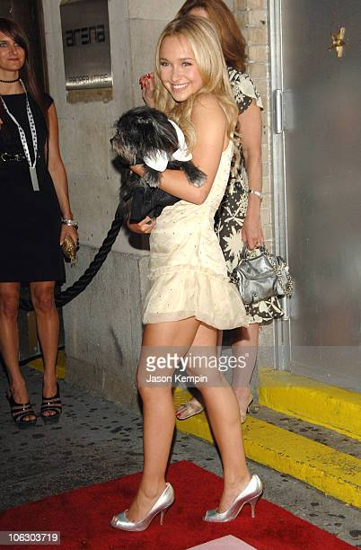 Hayden Panettiere during Animal Fair's 8th Annual 'Paws for Style' June 11 2007 at Arena in New York City New York United States