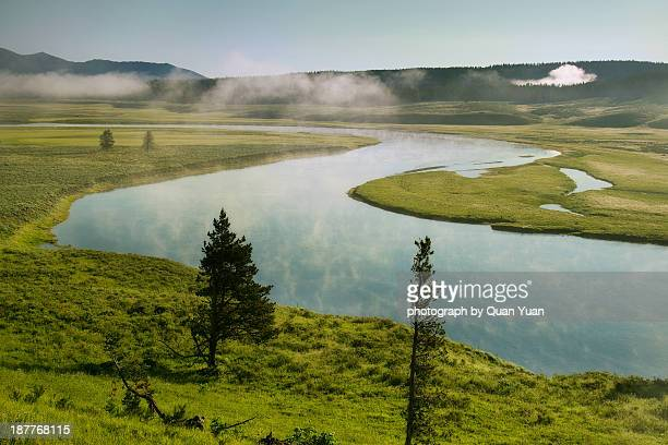 hayden valley morning - yuan quan stock pictures, royalty-free photos & images