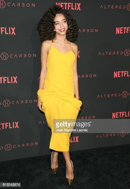 Hayley Law attends the World Premiere of the Netflix Original Series 'Altered Carbon' on February 1 2018 in Los Angeles California