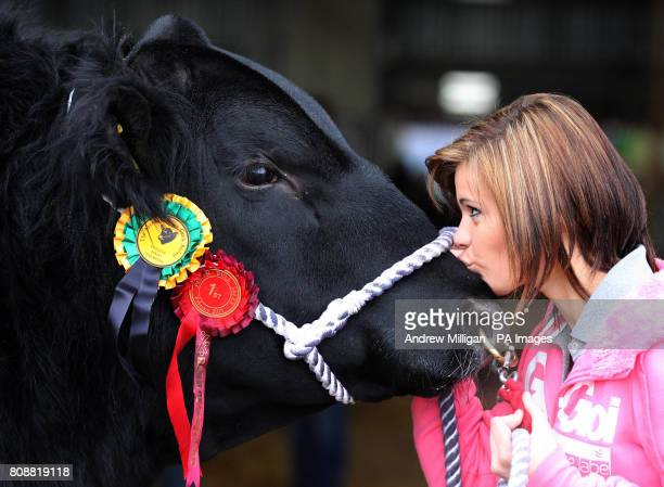 Hayley Massie 14 from Blelack Farm in Aberdeenshire kisses her Aberdeen Angus bull after winning first prize in its class during the Perth Bull Sale...