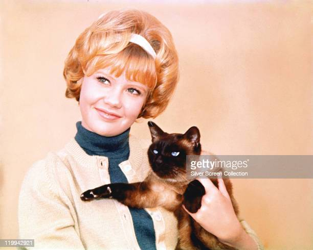 Hayley Mills British actress wearing a blue polo neck jumper beneath a yellow cardigan as she poses with a siamese cat called 'Syn' in a publicity...