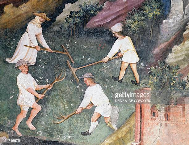Haymaking detail from the Month of July panel taken from Cycle of the Months by Master Venceslao fresco Tower Aquila Buonconsiglio Castle Trento...