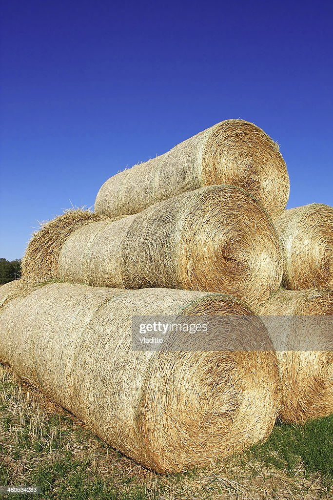 Haystack on the meadow : Stockfoto
