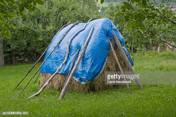 Haystack protected from rain with blue tarpaulin
