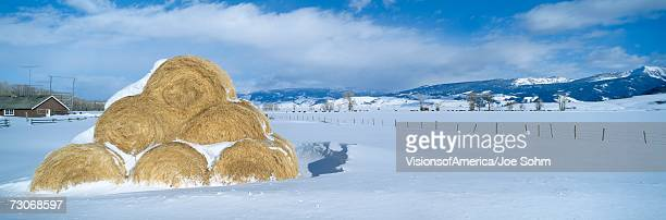 'Haystacks and Snow, Moose-Wilson Road, Jackson, Wyoming'