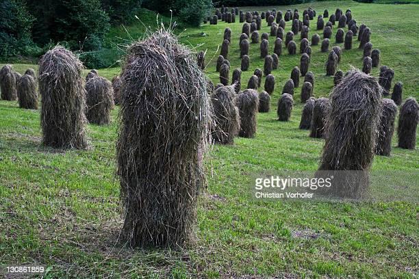 Haystacks, haymaking, Zillertal valley, North Tyrol, Austria, Europe