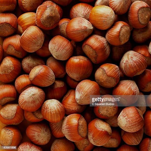 Hazel Nuts, Filbert Nuts