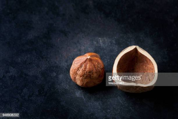 hazelnut and shell on dark ground - nutshell stock photos and pictures