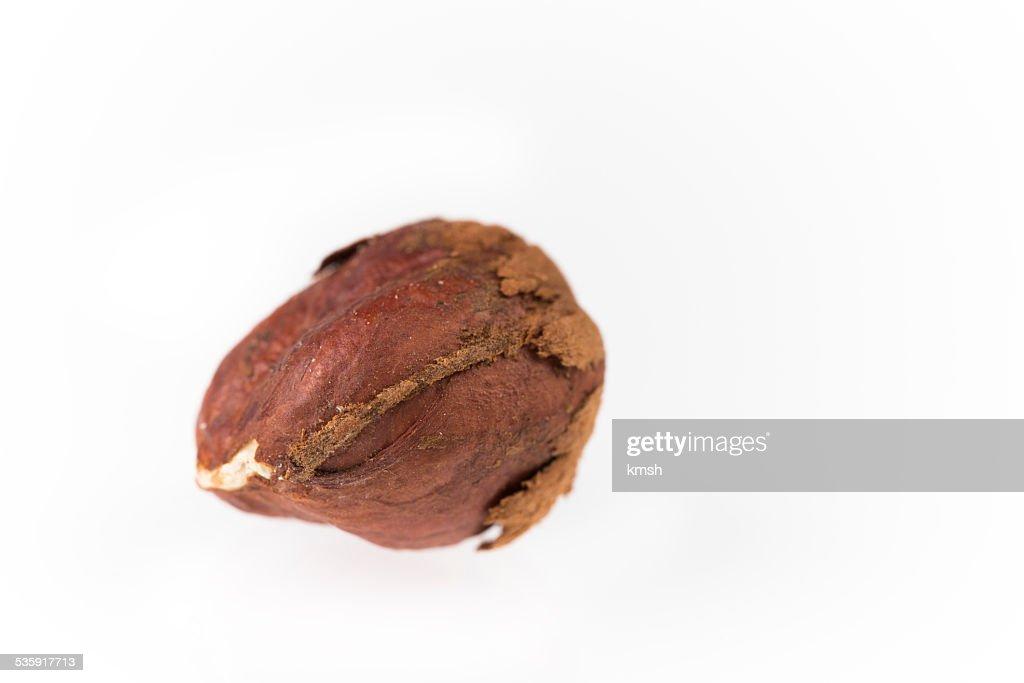 Hazelnut : Stock Photo