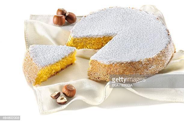 Hazelnut sponge cake with icing sugar