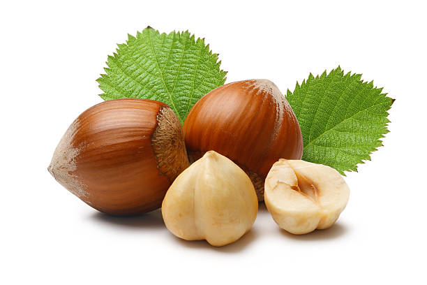 hazelnuts composition - hazelnut stock pictures, royalty-free photos & images