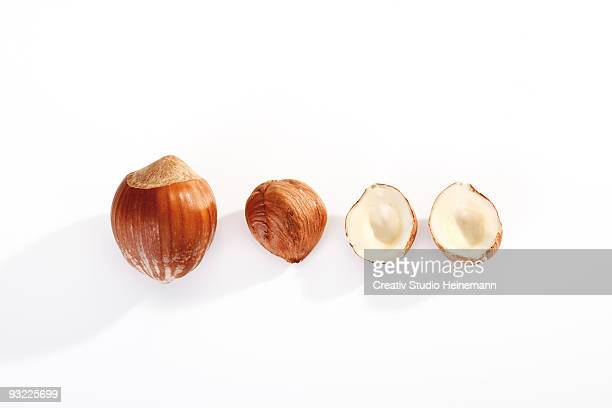 Row of hazelnuts on white background, overhead view, close-up