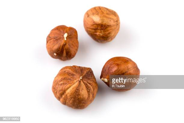 hazelnuts nut isolated on the white background - hazelnuts stock pictures, royalty-free photos & images