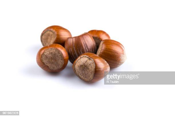 hazelnuts nuts filberts isolated on white background - hazelnuts stock pictures, royalty-free photos & images