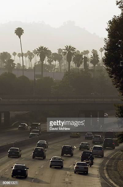 A hazy sky looms over palm trees and traffic along the 101 freeway near Hollywood on June 14 2004 in Los Angeles California New California auto...
