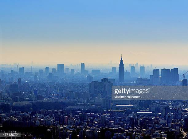 Hazy Tokyo cityscape