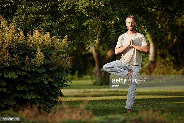 he lives a balanced lifestyle - tree position stock photos and pictures
