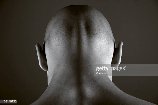 head 1 - completely bald stock pictures, royalty-free photos & images