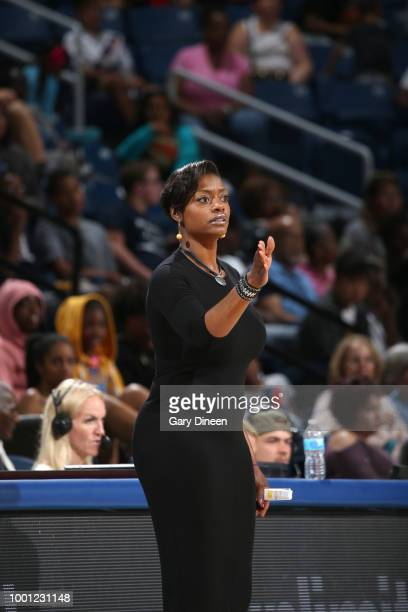 Head Coach Amber Stocks of the Chicago Sky looks on during the game against the Seattle Storm on July 18 2018 at the Wintrust Arena in Chicago...