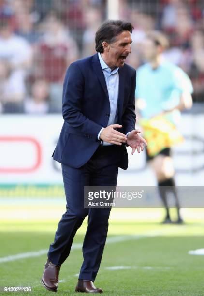 Head coach Bruno Labbadia of Wolfsburg celebrates after the Bundesliga match between Sport-Club Freiburg and VfL Wolfsburg at Schwarzwald-Stadion on...