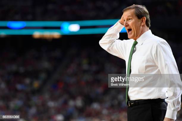 head coach Dana Altman of the Oregon Ducks reacts to a play during the 2017 NCAA Men's Final Four Semifinal against the North Carolina Tar Heels at...