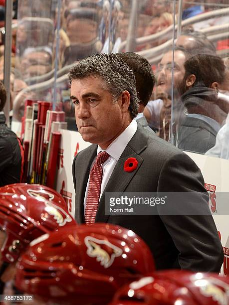 Head coach Dave Tippett of the Arizona Coyotes looks on from the bench against the Toronto Maple Leafs at Gila River Arena on November 4 2014 in...