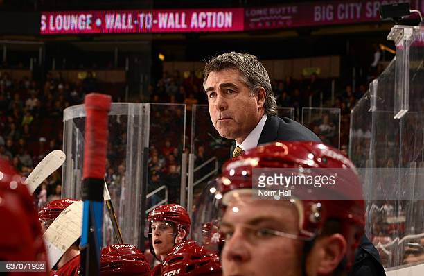 Head coach Dave Tippett of the Arizona Coyotes looks on from the bench against the Dallas Stars at Gila River Arena on December 27 2016 in Glendale...