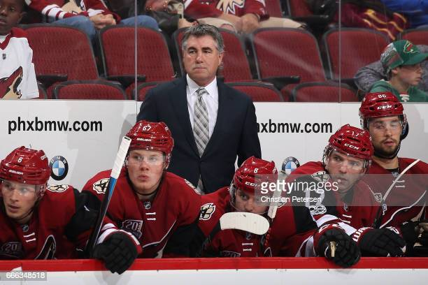 Head coach Dave Tippett of the Arizona Coyotes watches from the bench during the third period of the NHL game against the Minnesota Wild at Gila...