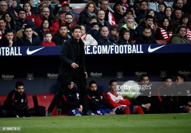 Head coach Diego Simeone of Atletico Madrid looks on from the substitutes' bench during a La Liga week 24 match between Atletico Madrid and Athletic...