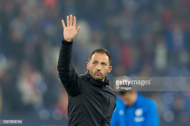 Head coach Domenico Tedesco of FC Schalke gestures after the Bundesliga match between FC Schalke 04 and FC Bayern Muenchen at VeltinsArena on...