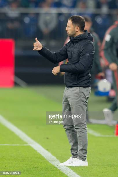 Head coach Domenico Tedesco of FC Schalke gestures during the Bundesliga match between FC Schalke 04 and FC Bayern Muenchen at VeltinsArena on...
