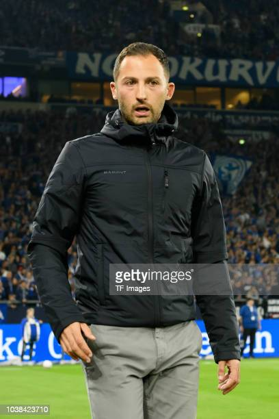 Head coach Domenico Tedesco of FC Schalke looks on during the Bundesliga match between FC Schalke 04 and FC Bayern Muenchen at VeltinsArena on...