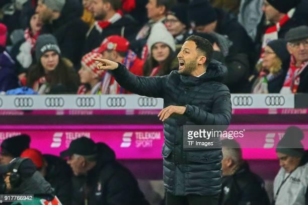 Head coach Domenico Tedesco of Schalke gestures during the Bundesliga match between FC Bayern Muenchen and FC Schalke 04 at Allianz Arena on February...