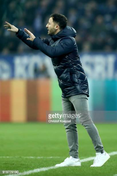 Head coach Domenico Tedesco of Schalke issues instructions during the Bundesliga match between FC Schalke 04 and TSG 1899 Hoffenheim at VeltinsArena...
