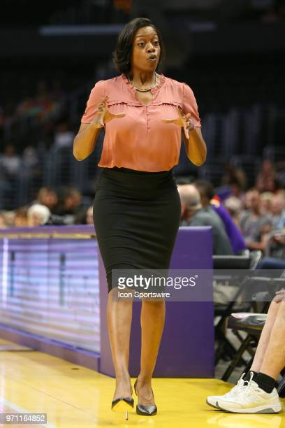 Head coach for the Chicago Sky Amber Stocks during a WNBA game between the Los Angeles Sparks and the Chicago Sky on June 10 at Staples Center in Los...