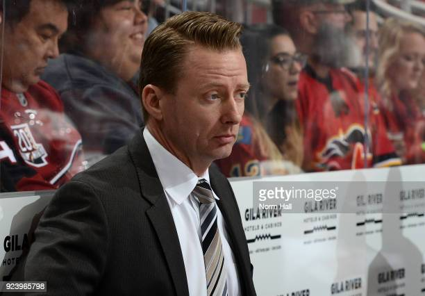Head Coach Glen Gulutzan of the Calgary Flames looks on from the bench against the Arizona Coyotes at Gila River Arena on February 22 2018 in...