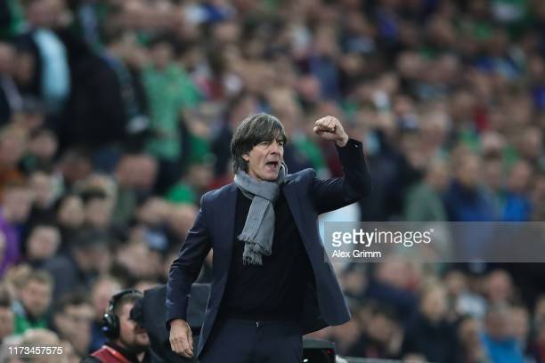 Head coach Joachim Loew reacts during the UEFA Euro 2020 qualifier match between Northern Ireland and Germany at Windsor Park on September 09 2019 in...