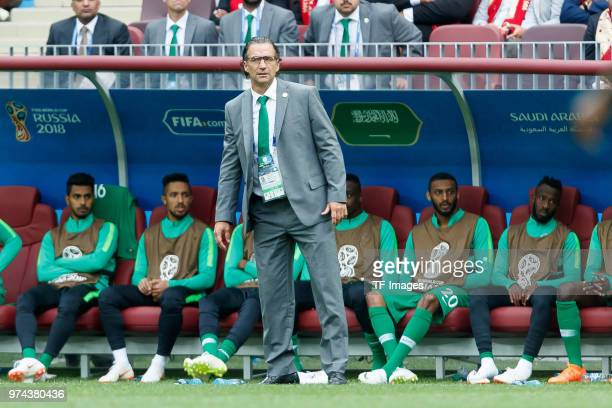 Head coach Juan Antonio Pizzi of Saudi Arabia looks on during the 2018 FIFA World Cup Russia group A match between Russia and Saudi Arabia at...
