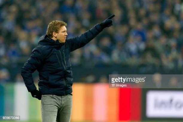 Head coach Julian Nagelsmann of Hoffenheim gestures during the Bundesliga match between FC Schalke 04 and TSG 1899 Hoffenheim at VeltinsArena on...