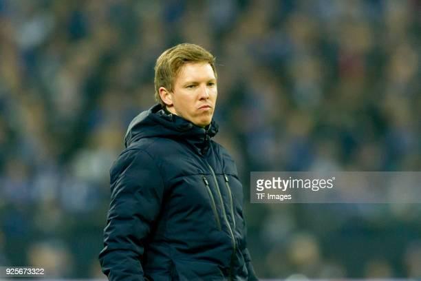 Head coach Julian Nagelsmann of Hoffenheim looks on during the Bundesliga match between FC Schalke 04 and TSG 1899 Hoffenheim at VeltinsArena on...