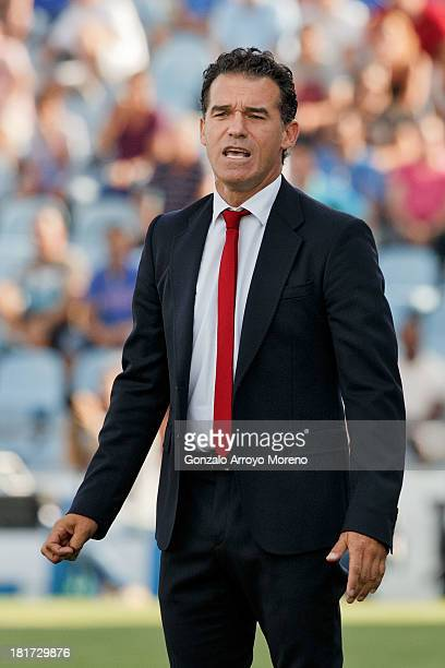 head coach Luis Garcia of Getafe CF looks on during the La Liga match between Getafe CF and CA Osasuna at Coliseum Alfonso Perez on September 15 2013...