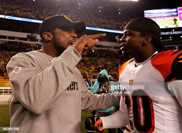 Head coach Mike Tomlin of the Pittsburgh Steelers exchanges words with Reggie Nelson of the Cincinnati Bengals after Pittsburgh's 2717 win at Heinz...