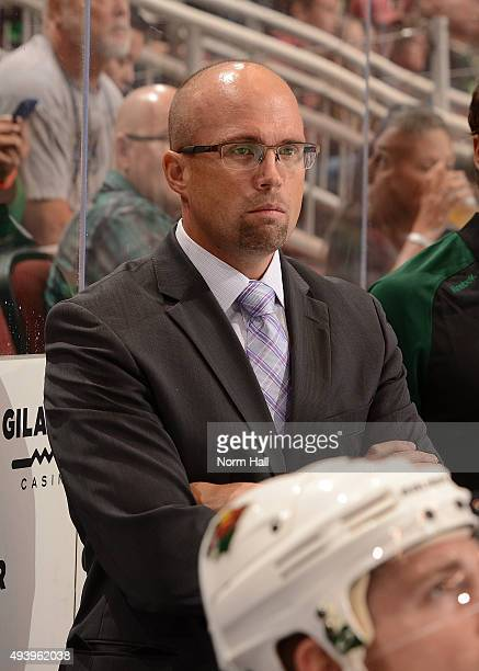 Head coach Mike Yeo of the Minnesota Wild looks on from the bench against the Arizona Coyotes at Gila River Arena on October 15 2015 in Glendale...