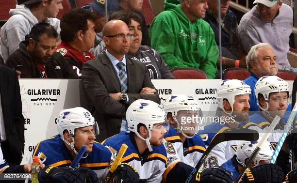 Head coach Mike Yeo of the St Louis Blues looks on from the bench during a game against the Arizona Coyotes at Gila River Arena on March 29 2017 in...