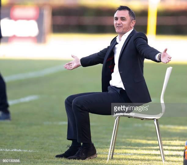 Head coach Nebojsa Vignjevic of Ujpest FC reacts during the Hungarian OTP Bank Liga match between Budapest Honved and Ujpest FC at Bozsik Stadium on...