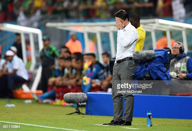 Head coach Niko Kovac of Croatia reacts after a 31 defeat in the 2014 FIFA World Cup Brazil Group A match between Croatia and Mexico at Arena...