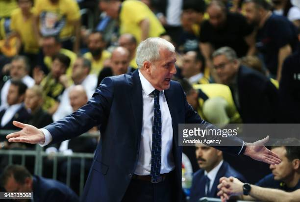 Head coach of Fenerbahce Dogus Zekljko Obradovic reacts during the Turkish Airlines Euroleague basketball match between Fenerbahce Dogus and Baskonia...